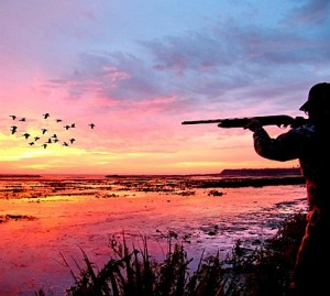 Duck hunting in Texas
