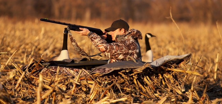 best layout duck blinds